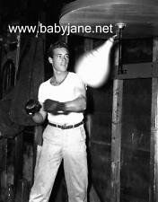 043 GUY MADISON CANDID WORKOUT W/ PUNCHING BAG PHOTO