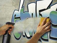 Rust-Oleum Graffiti Reiniger Shield Cleaner 500ml Sprayflasche Farblöser Wand St