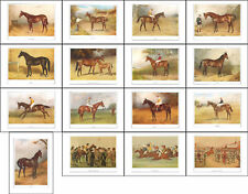 RACEHORSES - SET  OF  16  RACE  HORSES  OF  VANITY  FAIR  -  (REPRODUCTIONS)