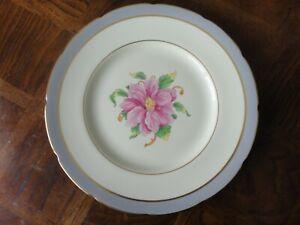 "Coalport Bone China 11"" Dinner Plate ""Tomorrow"""