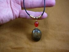 (PP11-3) Real MOOSE POOP doo doo with red glass + gold brass bead NECKLACE fun