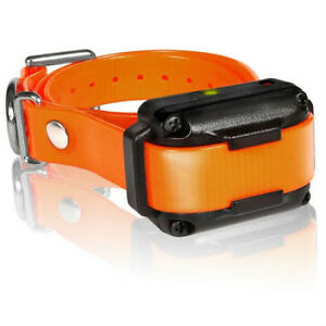 Dogtra iQPlus RX IQ Plus Additional Orange Waterproof & Rechargeable Receiver