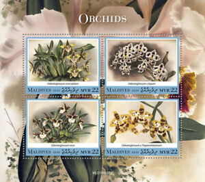 Maldives Flowers Stamps 2020 MNH Orchids Odontoglossum Orchid Nature 4v M/S