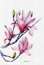 Magnolia, flower, pink, green, Watercolor Original Painting from the Artist