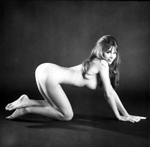 Nude Model 1960's Vintage ORIGINAL Pinup ART Pose Negative - LOIS MITCHELL JG