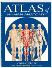 Atlas of Human Anatomy: By Vincent Perez