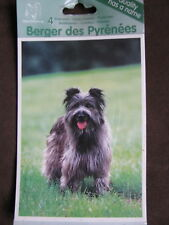 4 Hundepostkarten Berger des PYRENEES Ansichtskarten 015 Postkarten Hundebilder