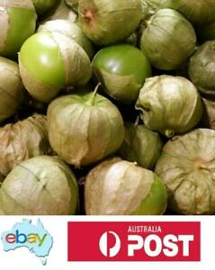 TOMATILLO - VERDE PUEBLA - 100 SEEDS - AUSTRALIAN STOCK -