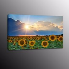 Sunflowers Canvas Prints Poster Flower Wall Art Painting Home Decor-No Frame