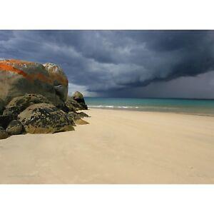 """Approaching Storm"" Bridport 1000 piece Jigsaw by John Temple"