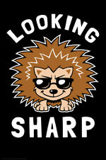 Looking Sharp Hedgehog Funny Poster 12x18 inch
