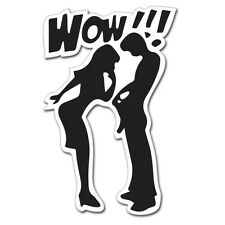 "WOW Looking Down Pants Funny Rude Adult car bumper sticker decal 6"" x 4"""