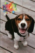 Cute Puppy Wishes Happy Birthday, Beagle Dog, Animal, Balloons - Modern Postcard