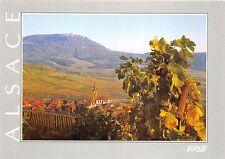 B53060 Alsace Route des vins Rodern   france
