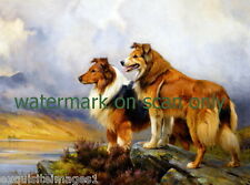 1898 Two Collie Puppy Dog Dogs on a Rock Overlooking a River~New Lge Note Cards
