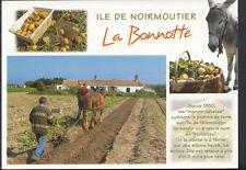 France Postcard - Ile De Noirmoutier - La Bonnotte  B2240