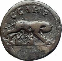 COMMODUS 188AD Parium Parion Mysia Authentic Ancient Roman Coin WOLF i78472