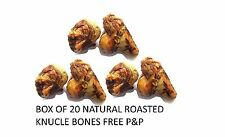BOX OF 20 QUALITY ROASTED BEEF KNUCKLE BONES DOG CHEW TREAT 100% NATURAL BULK