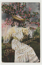 Greetings from Spring Brook Mountain House, Milford PA c. 1910 Pennsylvania