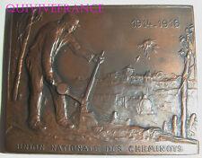 MED6239 - MEDAILLE CHEMINOT MORT AU CHAMP D'HONNEUR 1914-1916 par FOERSTER