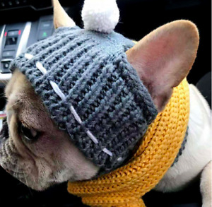 Winter Wool Hat For French Bulldog