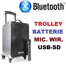 CASSA ACUSTICA AMPLIFICATA  TROLLEY BATTERIE BLUETOOTH USB SD microfono wireless