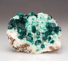 Stunning Emerald Green Dioptase Crystals on White Calcite from Tsumeb, Namibia