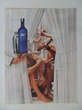 2006 Print Ad Skyy Vodka Liquor ~ Private Surprise Toast