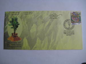 2017 India Special Cover on Turmeric - Spice of india Limited Edition