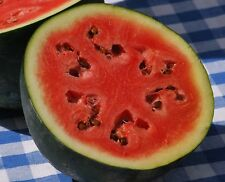 50+ Sugar Baby Watermelon Seeds- For 2018- Open-Pollinated    $1.69 Max Shipping