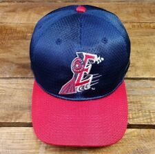 Round Rock Express MiLB Triple A AAA Snapback Hat Cap Texas MLB Shiny VTG (BoxC)