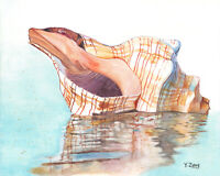 "Original artwork gouache/watercolor painting sea shell on paper, 8×10"""