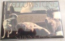 "Multicolor 2X3"" YELLOWSTONE NATL PARK Wildlife Refrigerator Magnet"