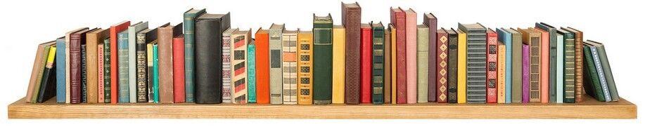 Book Shopping la librairie du monde