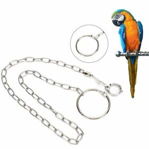 Pet Parrot Leg Ring Ankle Foot Chain Bird Ring Flying Training Opening-Stand