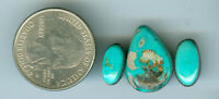 3 11 total Carats Natural American Turquoise Cabs Fox Mine Blue