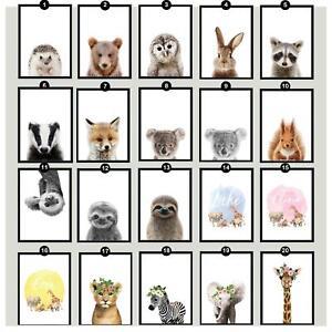 Animal Wall Prints Childs Bedroom Nursery Personalised 40 Designs