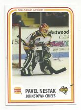 1998-1999 Johnstown Chiefs (ECHL) Pavel Nestak (goalie)