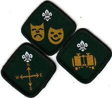 Boy Scout Badges ENTERTAINER + EXPLORER + OBSERVER Proficiency