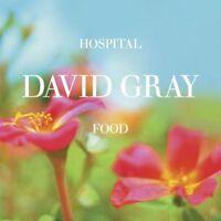 Hospital Food - David Gray- CD- DISC ONLY!!!!!
