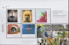 CANADA 2010 Souvenir Sheet #2388 Wildlife Photography MNH