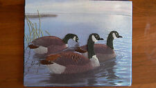 Completed Simplicity Colorart Crewel Regal Repose Canada Geese Wall Hanging Jca