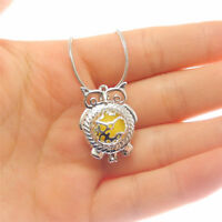 1x Silver Alloy DIY Jewelry Pendants Owl Bird Locket Pearl Cage Charms Necklace