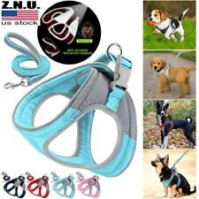 New listing Adjustable Reflective Soft Padded Dog Harness For Small Medium Dogs Chihuahua Us