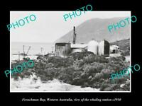 OLD 8x6 HISTORIC PHOTO OF FRENCHMAN BAY WEST AUSTRALIA WHALING STATION c1950