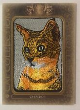 2020 Goodwin Champions Cat Collections Patch Chausie #FC-14
