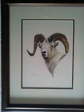 Dall Sheep Ram Watercolor Painting by AJ McCoy