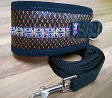 "**LEATHER** GREYHOUND DOG COLLAR FLEECE LINED ADJUSTs,13"" - 17"" **FREE LEAD**"