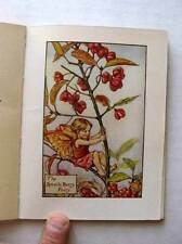 Amazing 1920s Flower Fairies of The Autumn Book Great Pics Cicely Mary Barker