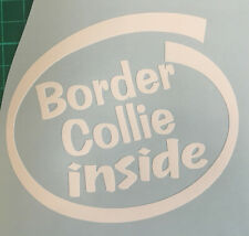 BORDER COLLIE INSIDE ON BOARD CAR WINDOW STICKER DECAL IN WHITE ALL COLOURS MADE